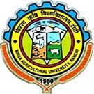 BAU Logo