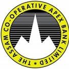 Apex Bank Logo