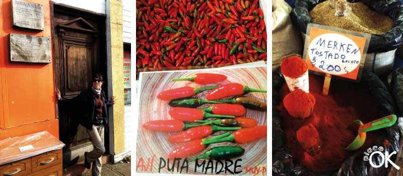 cocina mapuche