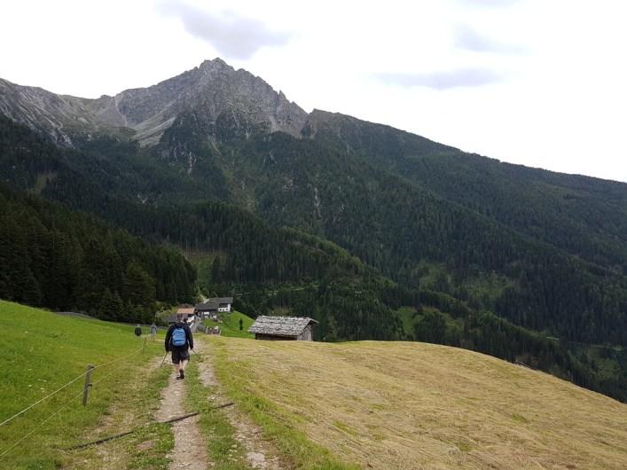 Weg entlang der Wiesen kurz vor dem Weiler Videgg