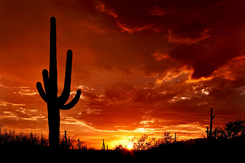 Top Places to See in Arizona  Visit Arizona List of over