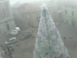 ecoalbero webcam_1