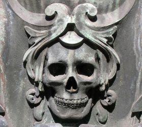 Skull Sample Image
