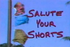 Salute Your Shorts Logo