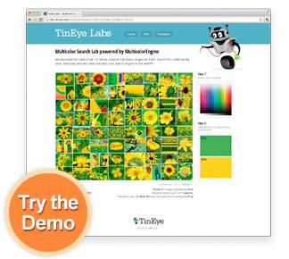 Tineye Image