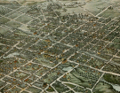 Bird's Eye View of Plainfield, N. J., where Mary Musgrave McClintock lived and died