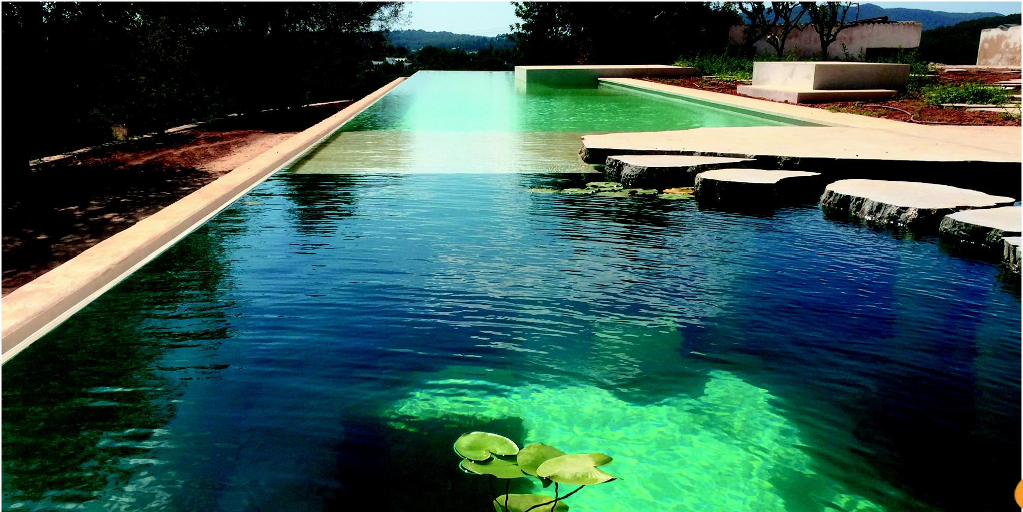 Architetto paesaggista  plain green