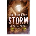 Breaking the Storm by Sedona Venez – Book Blitz