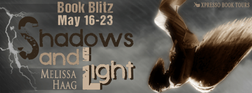 Shadow and Light book banner