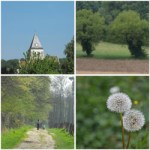 10 Fun Things to do in Rosoy France