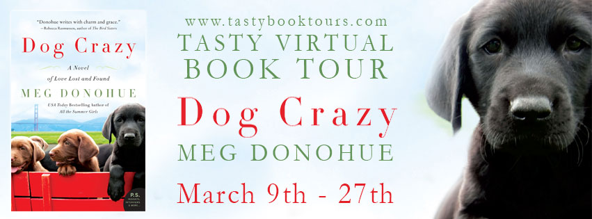 Dog Crazy banner