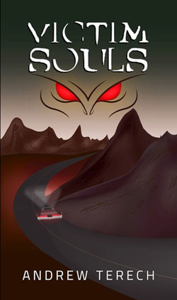Victim Souls Book cover