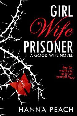 Girl wife prisoner book cover