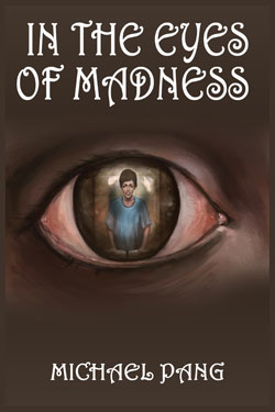 In the Eyes of Madness book cover