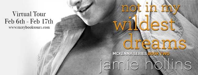 Jamie Hollins blog tour banner