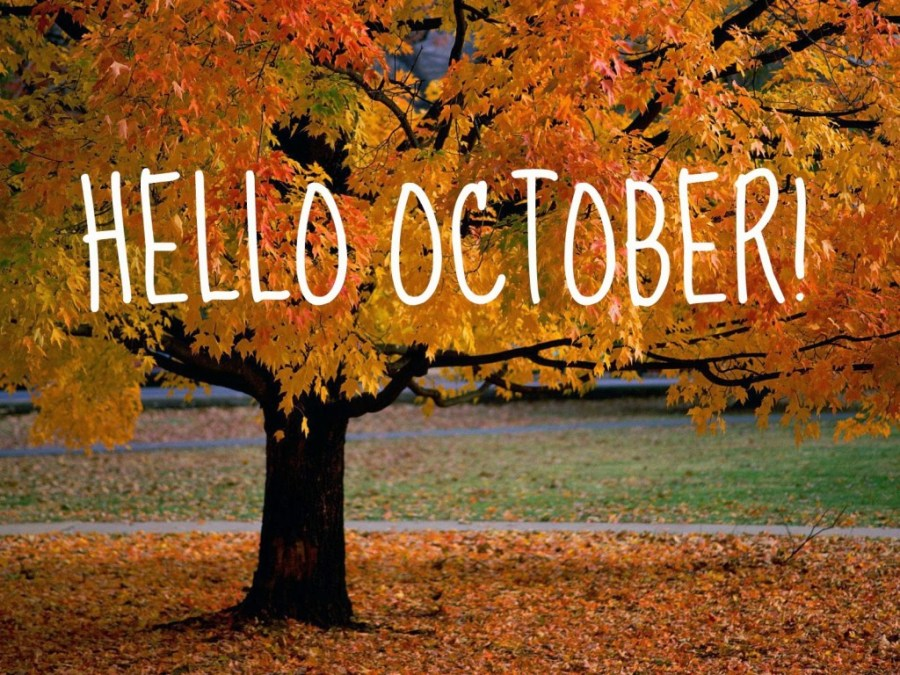 an-autumn-beauty