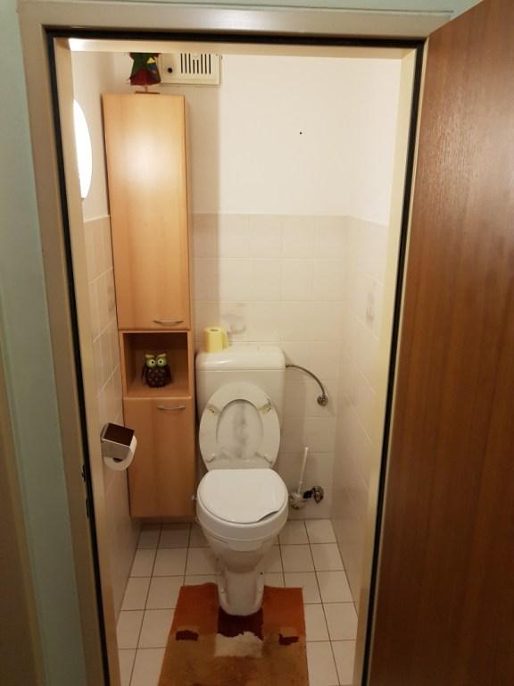 """WC RENOVIERUNG – Das """"Örtchen"""" mit dem Habenwollen-Effekt!"""