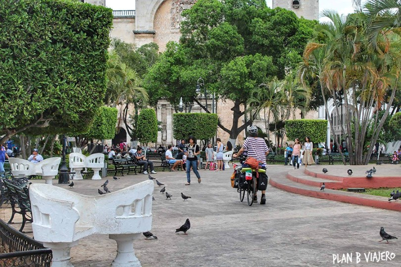plan b viajero, Península de Yucatán, Mérida