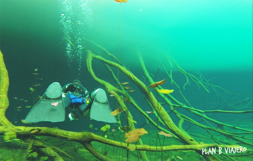 plan b viajero, cenotes en Tulum, cenote aktun ha tulum, cenote carwash diving