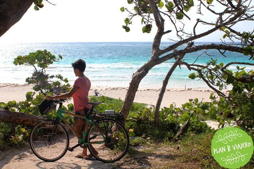 plan b viajero, habitos para una vida sustentable, moverse en bici, bici de bambu