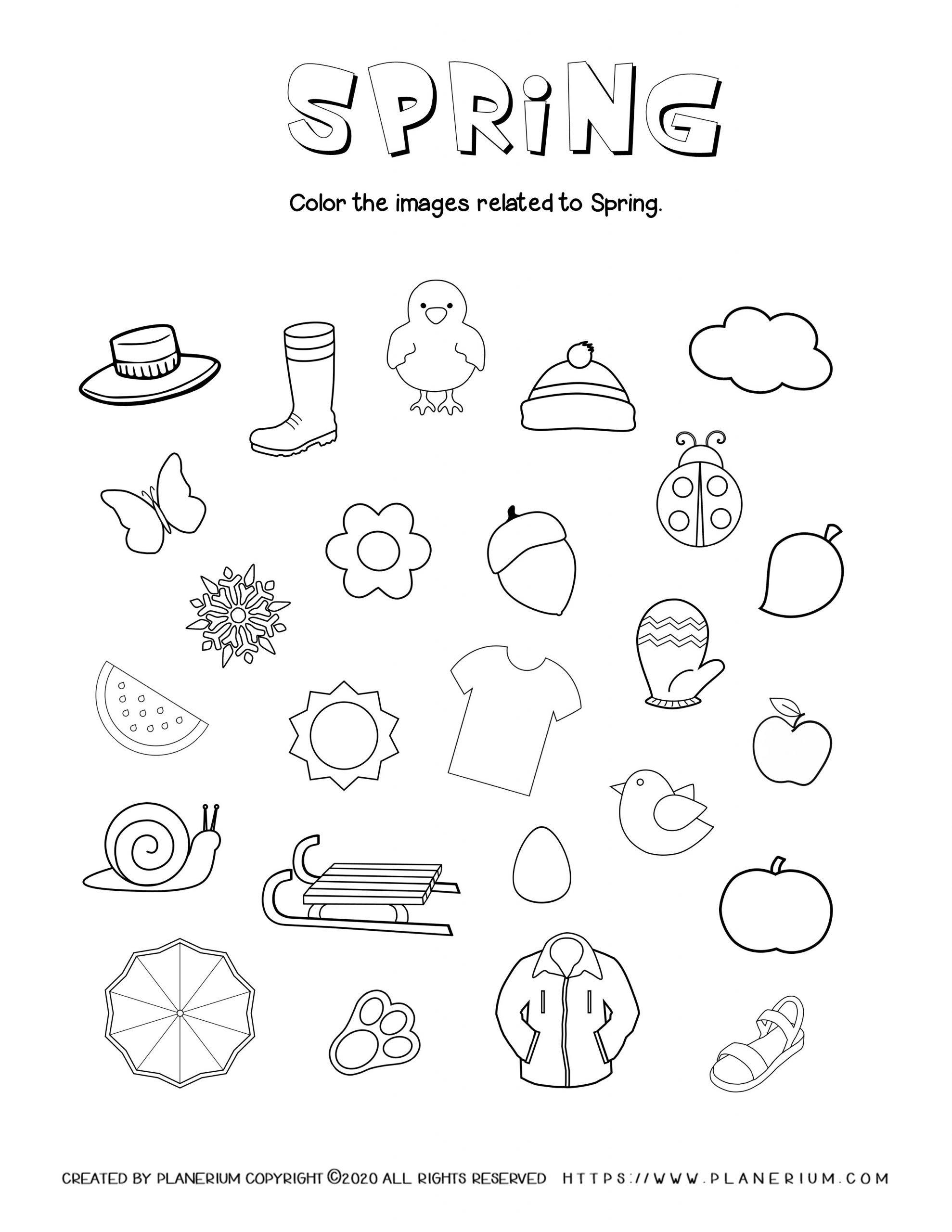 Spring Worksheet