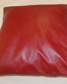 www.planet-craft.com-40-cms-red-leather-scatter-cushions-111