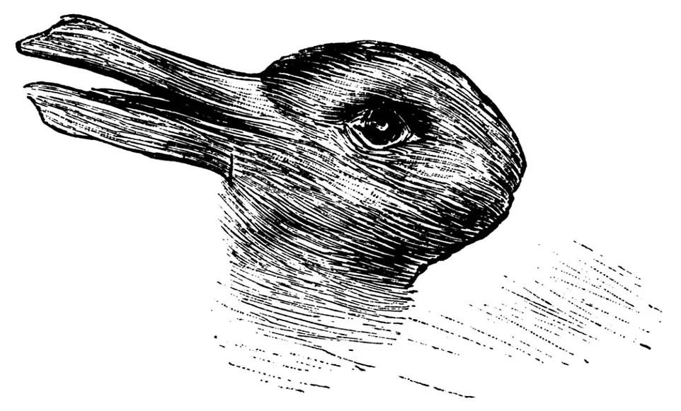 jastrow-que-animal-ves-conejo-pato-viral-ilustracion