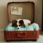 muebles reciclados con maletas