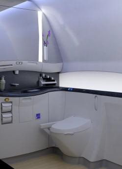 Japan Airlines Boeing 787 Executive Class Cabin Washroom