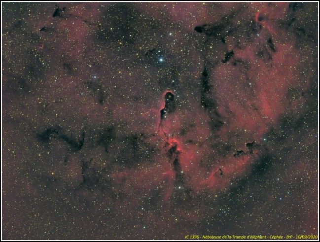 94_IC1396