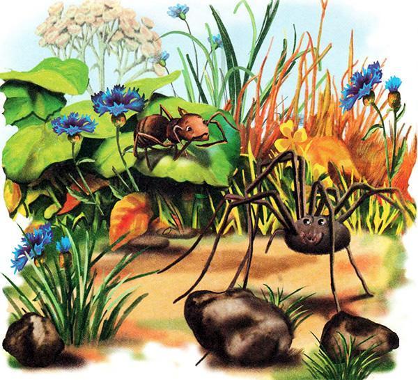 муравей и паук