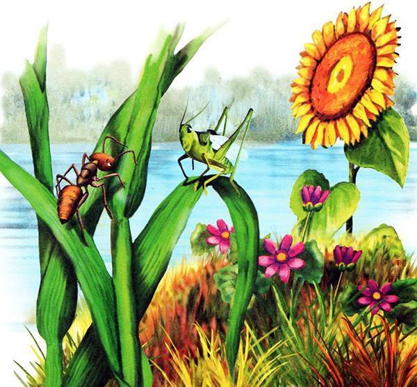 муравей и кузнечик