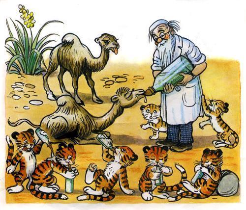 доктор Айболит лечит животных верблюжата и тигрята