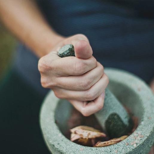 Técnico en herbodietética