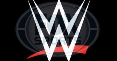 Fox interesada en WWE