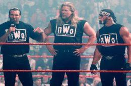 WWE Hulk Hogan nWo