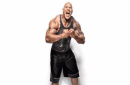The Rock WWE