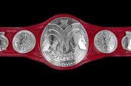 WWE Raw Tag Team