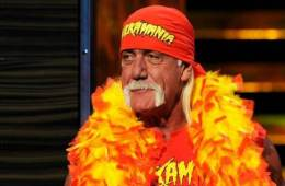 estatus de Hulk Hogan con WWE