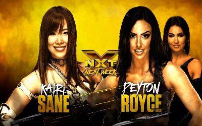 NXT combates semana que viene