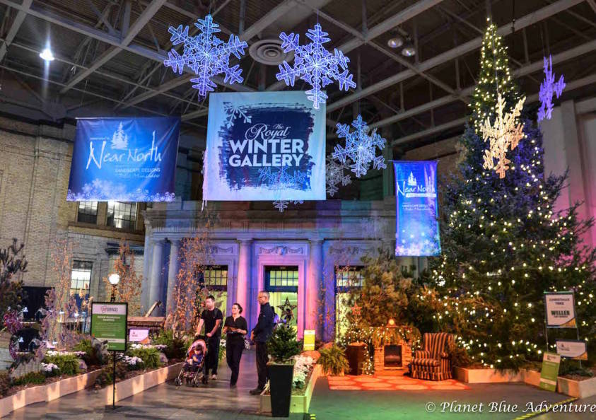 Bringing Country to City:  Top 5 Things to do at The Royal Agricultural Winter Fair