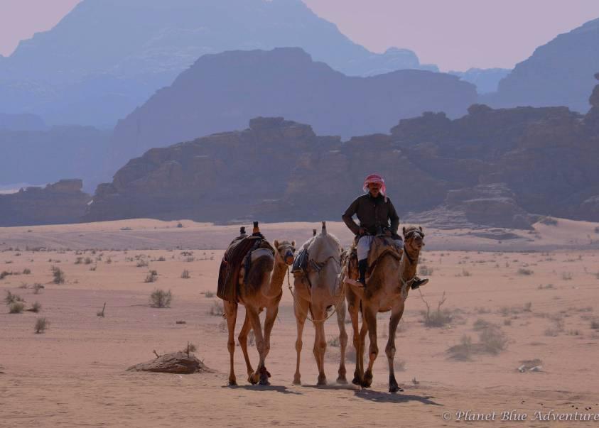 Visiting Jordan's Breathtaking Wadi Rum Desert