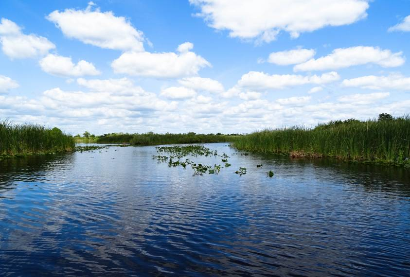 Treasure Coast: The Quieter Side of Florida