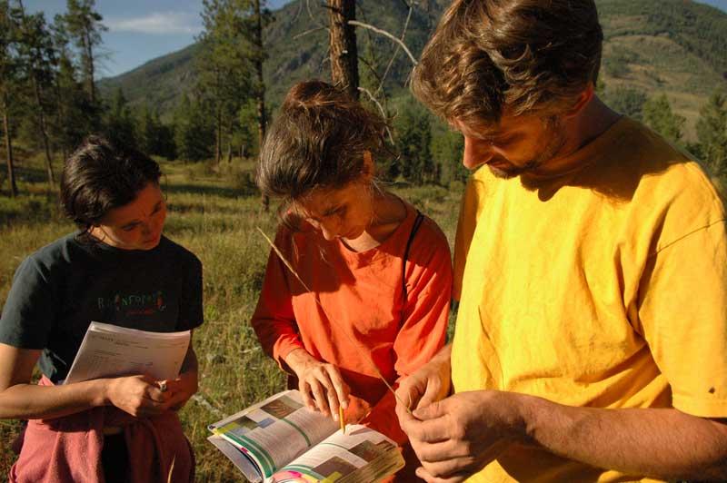 Grasslands BC Identification