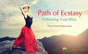 path-ecstasy-follow-bliss