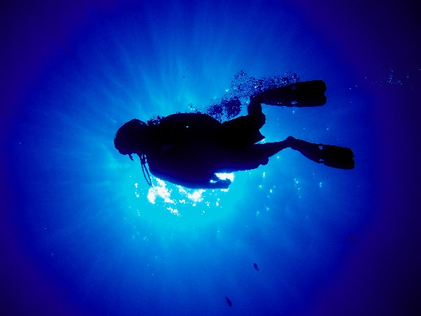 Meditation is Diving Beneath the Waves