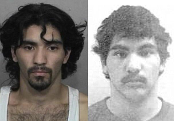 Man arrested for having sex with a dead deer