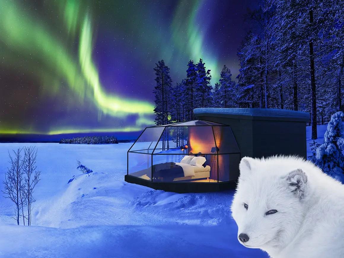 Cet igloo design en Laponie vous permet d'observer les étoiles et les aurores boréales
