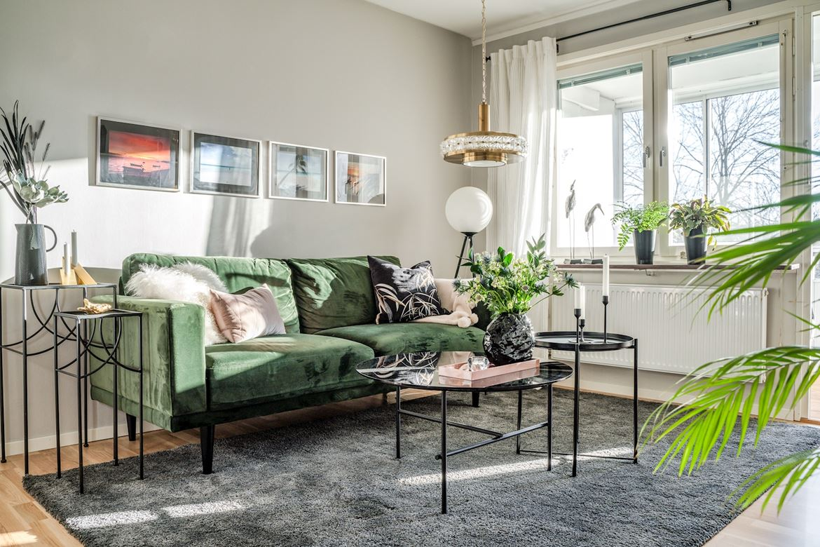 En décoration intérieure « green is the new black »