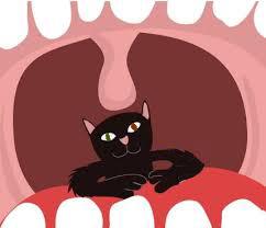 chat-dans-la-gorge-s'exprimer